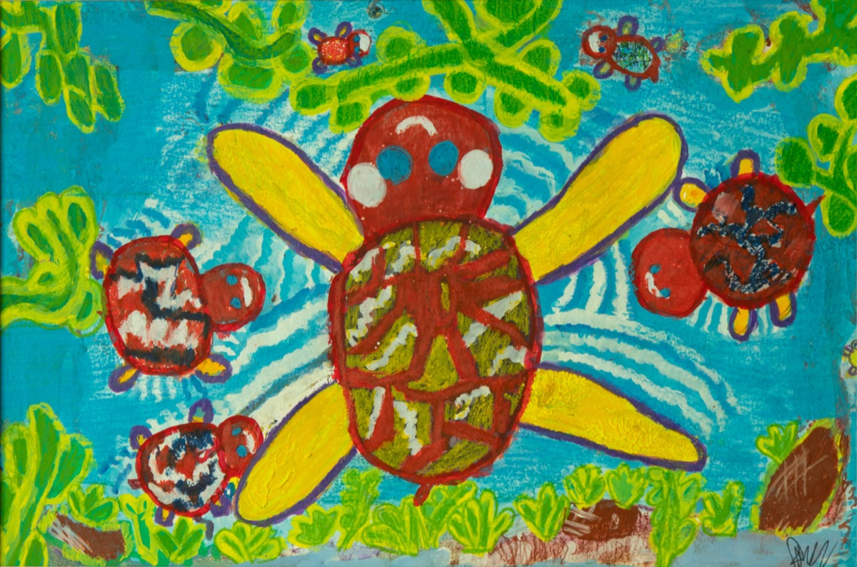 Turtle And Water_Mean Somnang